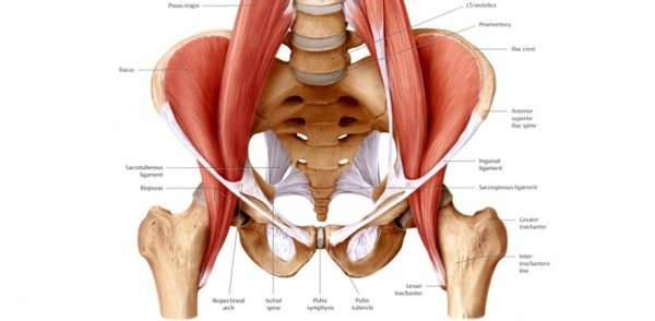 The Way To Eliminate Hip Flexor Pain