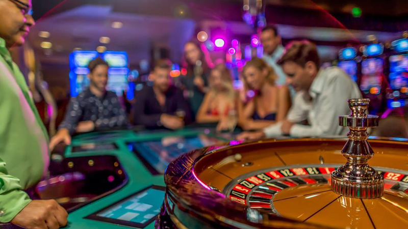 Four Methods Create Higher Gambling with the help of Your Canine